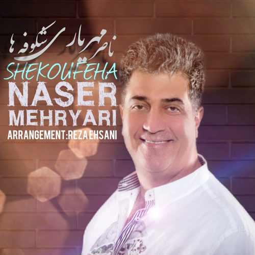 دانلود آهنگ جدید ناصر مهریاری شکوفه ها