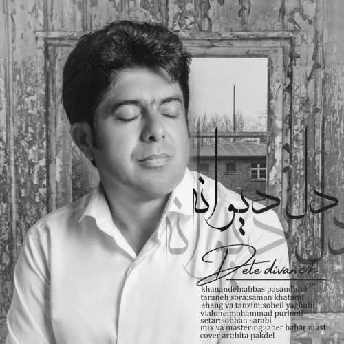 دانلود آهنگ جدید عباس پسندیده دل دیوانه