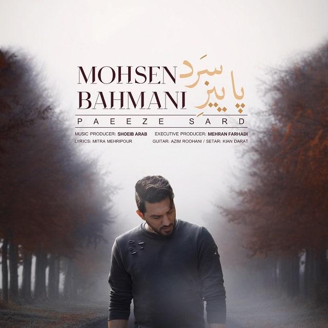 دانلود آهنگ جدید محسن بهمنی پاییز سرد