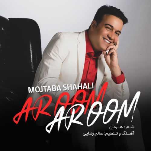 دانلود آهنگ جدید مجتبی شاه علی آروم آروم