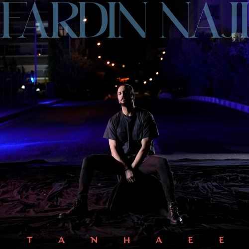 دانلود آهنگ جدید فردین ناجی تنهایی