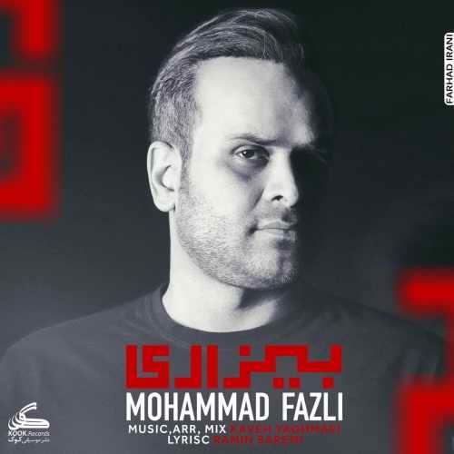 دانلود آهنگ جدید محمد فضلی بیزاری